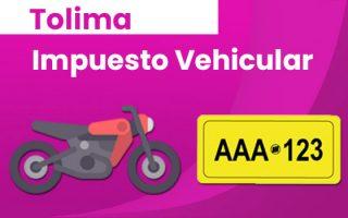 liquidación impuesto vehicular tolima