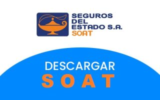 copia soat seguros del estado